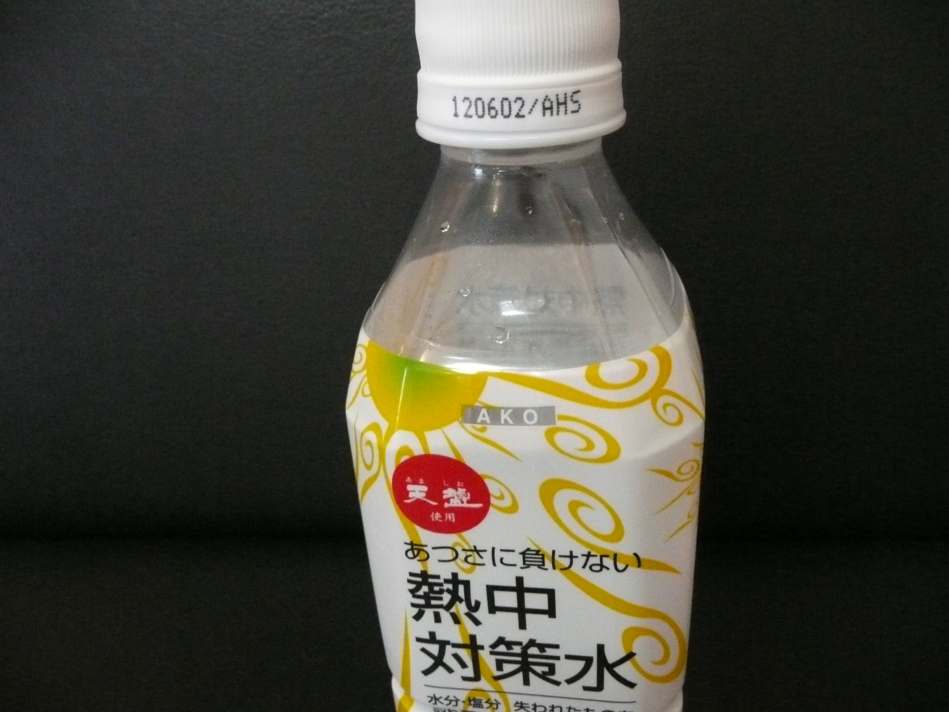 P1040585.JPG