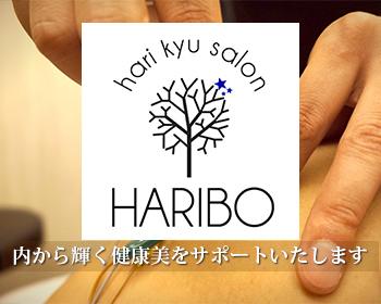 hari kyu salon HARIBO ブログ