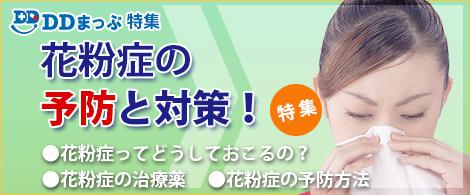 DDまっぷ特集 - 花粉症特集